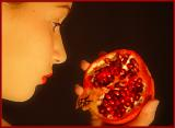 Pomegranate II by Sarah D