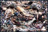 Salmon Run, The Aftermath
