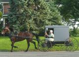 Amish Overloaded