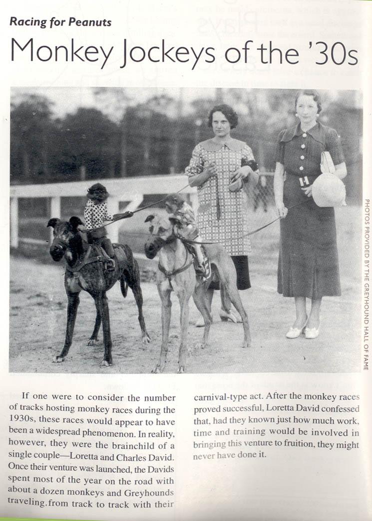 Monkey Greyhound Racing of the 1930s
