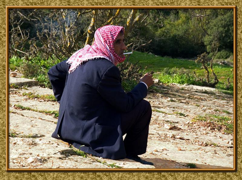 A Beduine Shepherd