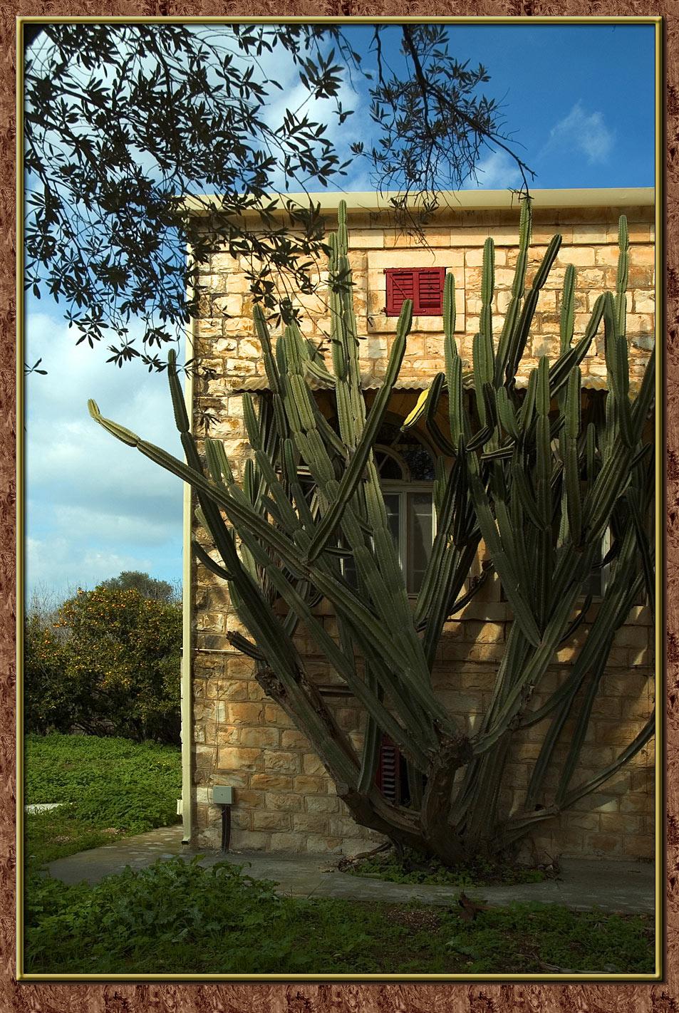 Beth-Lehem of Galilee