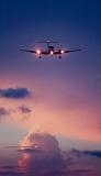 Landing at sunset aviation stock photo #SS9905p