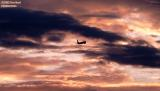 American Airlines B737-823 sunset aviation stock photo