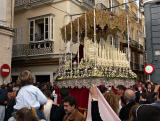 Palm Sunday in Cádiz