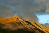 Mt White