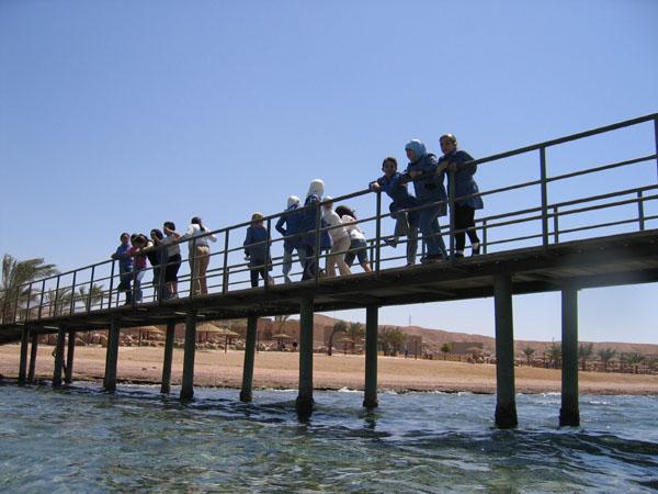 The jetty at the Aqaba Marine Park