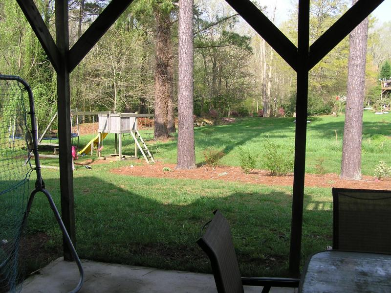backyard view from patio