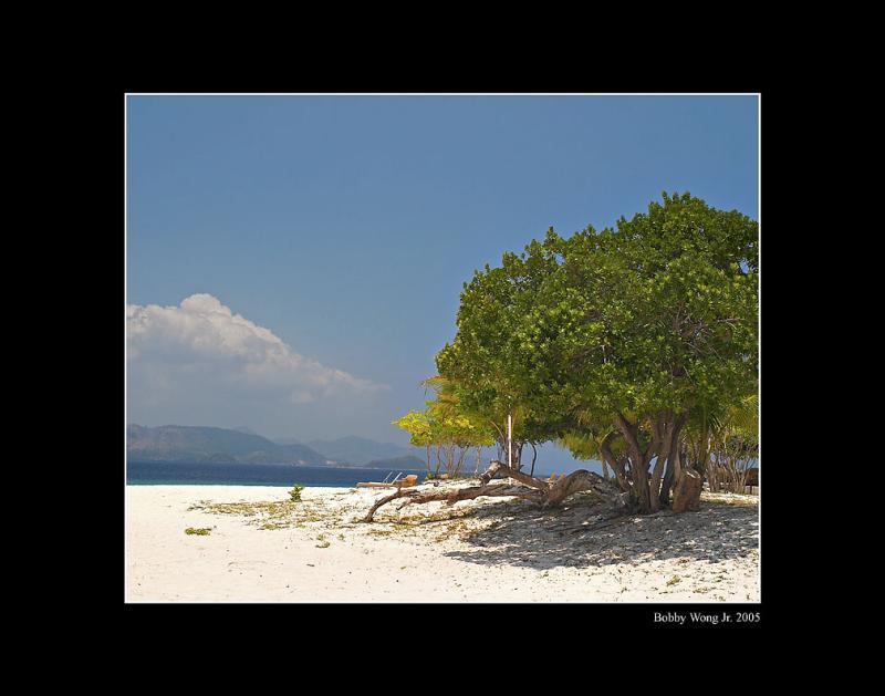Club Paradise, Dimakya Island