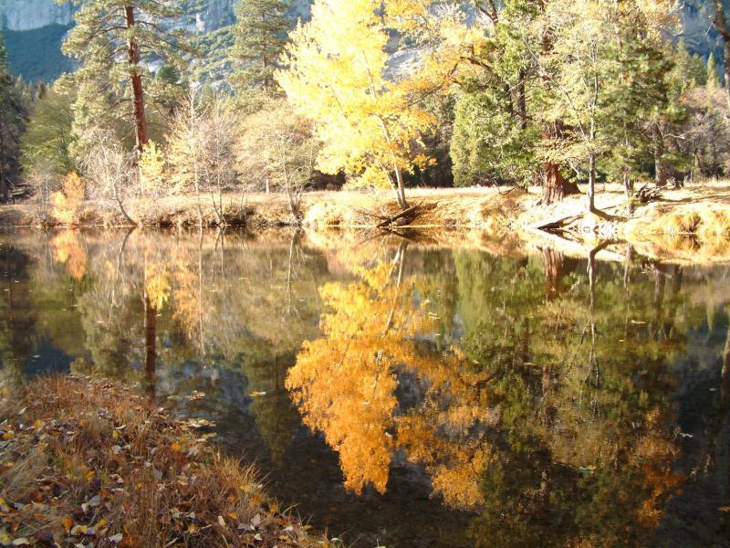 lake reflections.jpg