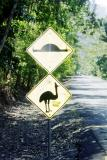 Australian humor - BEFORE--Cassowary Warning, AFTER (top) -Speed bump sign doctored to look like dead Cassowary