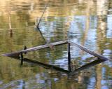 Floating Sticks abstract