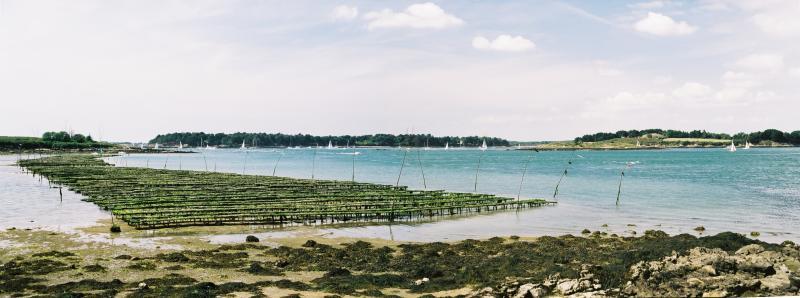 Panorama sur le golfe et lîle de Gavrinis