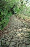 Chemin d'accès à une lévada