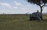 Lunch among the Wildebeest