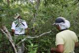Trek through Sokokie forest