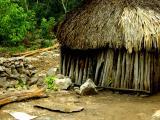 Maya Hut