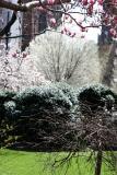 View from Jefferson Market Garden