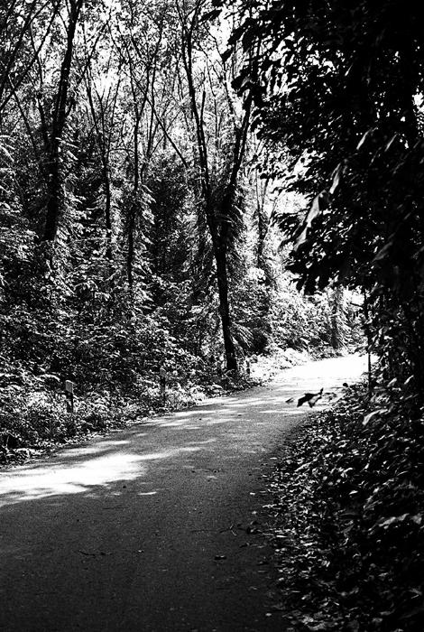 Road of Kampong Melayu