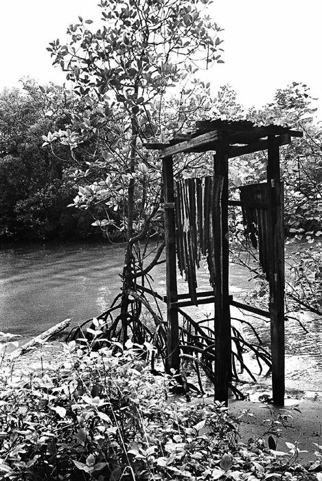Ruins of River Latrine
