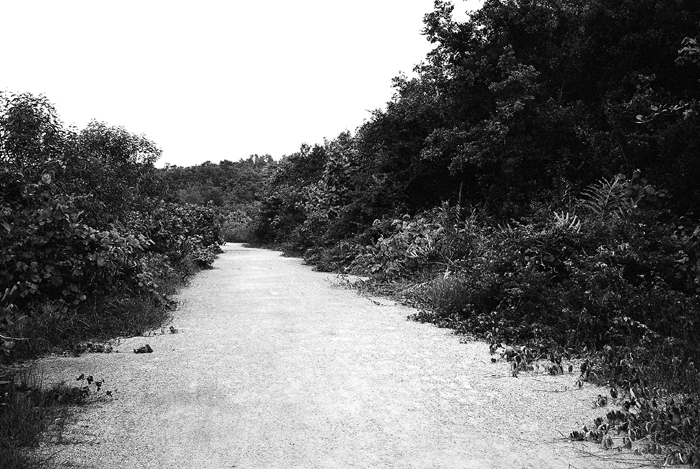 Road to Kampong Noordin
