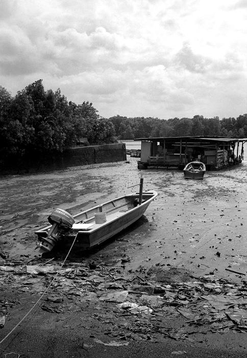 Boat at Low Tide II