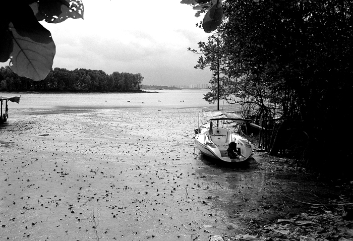 Boat at Low Tide III