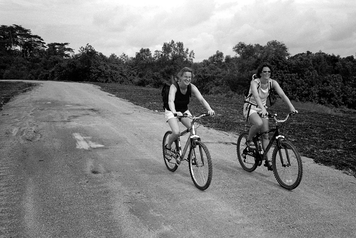 Tourists on Bicycles