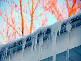 icicles ~ January 25th