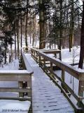 Trail Still Open