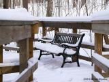 Love Seat Under The Snow
