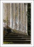 Steps and pillars ~ Stourhead