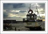Rhiannon, Lyme Regis