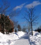 A Winter Sidewalk