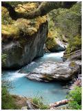 New Zealand -- Mossy Rock in Rob Roy Stream