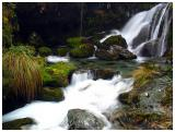 New Zealand -- Small Waterfalls and Pool