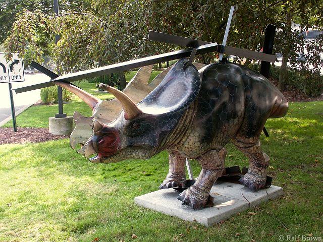 #35 Torn Torosaurus