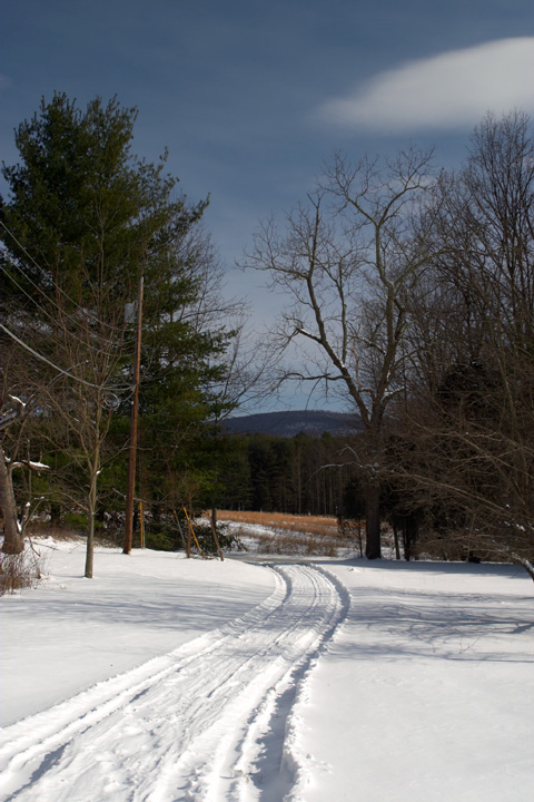 Snowy Driveway.jpg