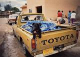 Dog Toyota Pick-Up, Santa Fe, New Mexico 1988