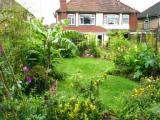 Rob Daniels Nuneaton garden (UK)