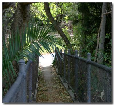 Footbridge - colour