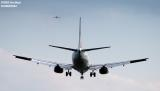 Continental Airlines B737 aviation stock photo