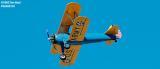 Warbird aviation air show stock photo