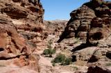 On the trail to the Monestary, Petra