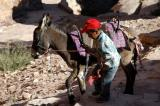 Boy with a donkey, Petra