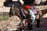 Boy with a donkey, Petra