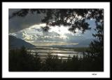 Fraser River looking west