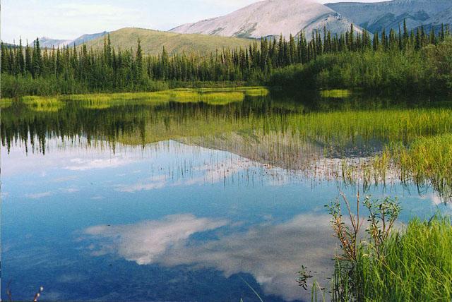 tarn,  Yukon