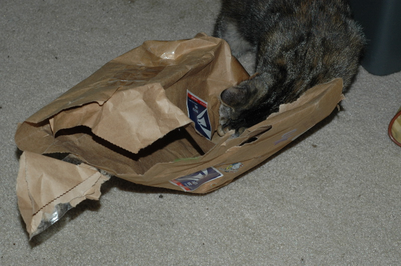 (the mouse is inside the bag)
