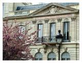 Library, 9th Arrondissement